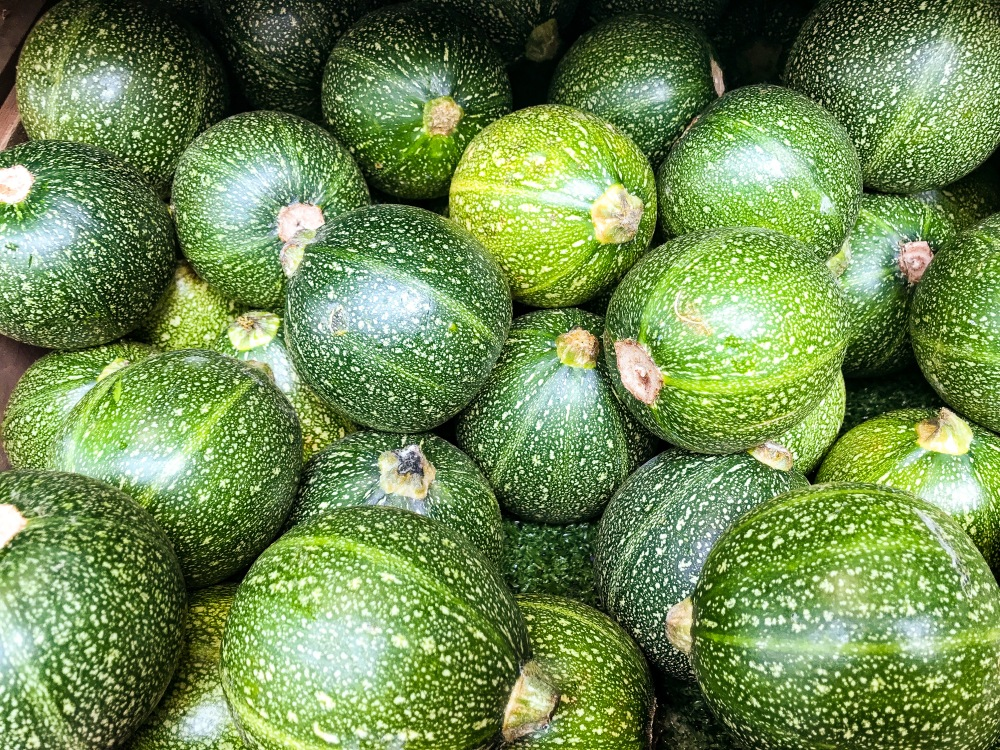 courgettes chatsworth